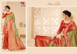Yadu Nandan Fashion Samayak 29451