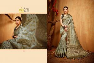 Style Instant Banarasi Silk 1264