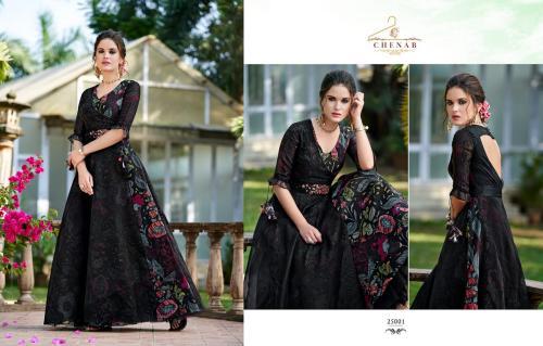 Swagat Chenab wholesale Kurti catalog